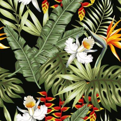 Jungle Fleurs Et Feuilles Fond Noir Papier Peint Papiers Peints