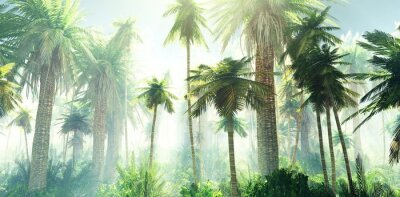 Papiers peints Jungle in the fog, palm trees in the morning in the haze, rays of light in the palm trees, 3D rendering