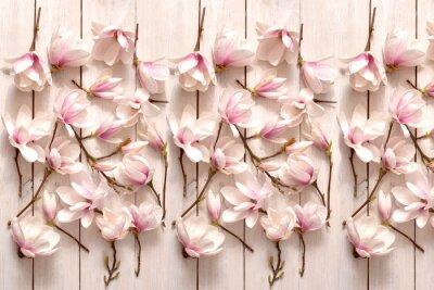 Papiers peints kwiat magnolii, kwiat, roślina, biała, beuty, galąź, drzewo magnolii, kwiatowy, fiolet, kwitnienie, flora, botanika, ornament z magnolii, kompozycja magnolii, układ kwiatów magnolii, pąki magnolii, fl