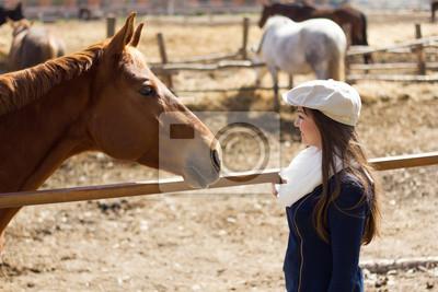 La fille regarde le cheval