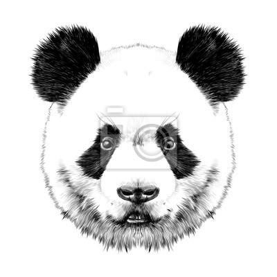 La t te de panda est sym trique droite dessin vectoriel - Dessins de panda ...
