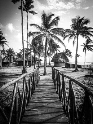 Papiers peints La vie de l'île