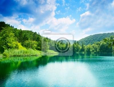 Lac vert deau dans la for t papier peint papiers peints for Papier peint a effet d optique