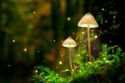 Papiers peints Lampes de champignons rougeoyantes avec des lucioles dans la forêt magique