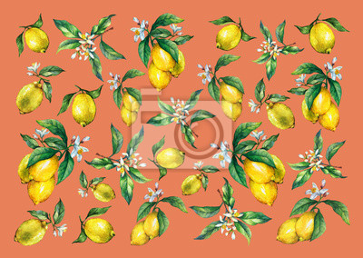 Le fond des branches de citrons frais d'agrumes avec des feuilles vertes et des fleurs. Main dessinée aquarelle sur fond orange.