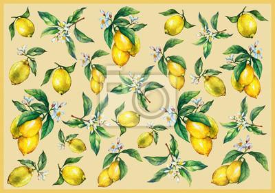 Le fond des branches de citrons frais d'agrumes avec des feuilles vertes et des fleurs. Peinture aquarelle dessinés à la main sur fond jaune.