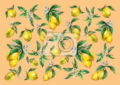 Le fond des branches des citrons frais aux agrumes aux feuilles et aux fleurs vertes. Peinture à l'aquarelle dessinée à la main sur fond jaune.