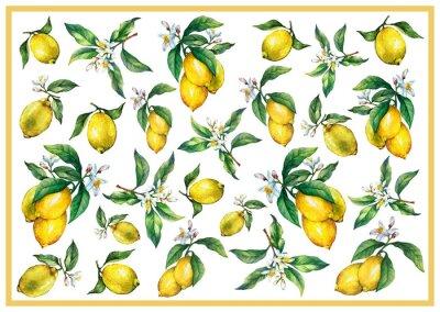 Papiers peints Le fond des branches des citrons frais aux agrumes aux feuilles et aux fleurs vertes. Peinture aquarelle dessinée à la main sur fond blanc.