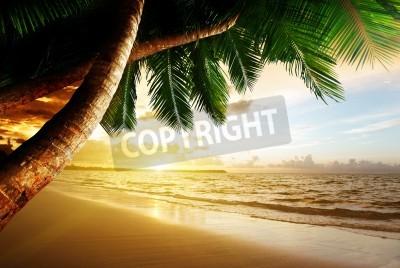 Papiers peints le lever du soleil sur la plage des Caraïbes