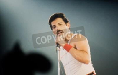 Papiers peints LEIDEN, PAYS-BAS - 27 NOVEMBRE 1980: Freddy Mercury chanteur de la bande britannique Queen lors d'un concert au Groenoordhallen à Leiden aux Pays-Bas