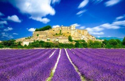 Papiers peints Les champs de lavande en France - de Provence