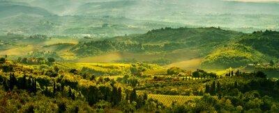 Papiers peints Les champs en Toscane
