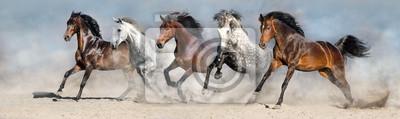 Papiers peints Les chevaux courent vite dans le sable contre le ciel dramatique