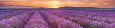 Papiers peints Lever de soleil sur les champs de lavande en Provence, France