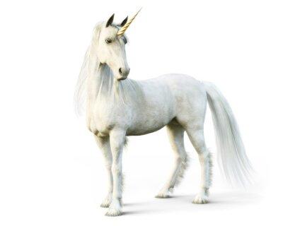 Papiers peints Licorne majestueuse posant sur un fond isolé blanc. Rendu 3D