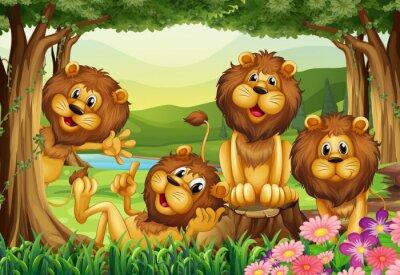 Papiers peints Lion vivant dans la jungle