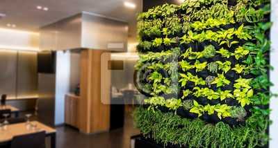 Papiers peints Living green wall, vertical garden indoors  in modern restaurant.