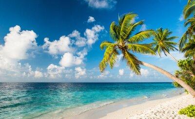 Papiers peints Lonely Beach aux Maldives