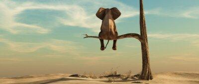 Papiers peints Lonely elephant on tree
