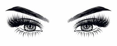 Papiers peints Look de maquillage sexy femme dessiné à la main avec des sourcils parfaitement formés et des cils très pleins. Idée pour carte de visite professionnelle, vecteur de typographie. Look de salon parfait