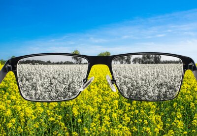 Papiers peints Looking through glasses to bleach nature landscape with blue sky and yellow field. Color blindness. World perception during depression. Medical condition. Health and disease concept.