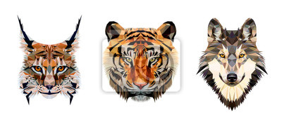 Papiers peints Low poly triangular tiger, lynx and wolf heads on white background, vector illustration isolated.  Polygonal style trendy modern logo design. Suitable for printing on a t-shirt.