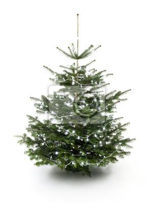 Luminous Christmas Tree