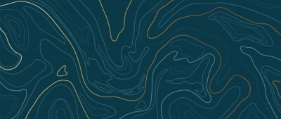Papiers peints Luxury gold abstract line art background vector.  Mountain topographic map background with golden lines  texture, 17:9 wallpaper design for wall arts, fabric , packaging , web, banner, app, wallpaper.