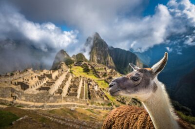 Papiers peints Machu Picchu, site du patrimoine mondial de l'UNESCO. L'un des nouveaux Seven W