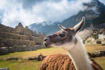 Papiers peints Machu Picchu, site du patrimoine mondial de l'UNESCO. Une des sept nouvelles merveilles du monde