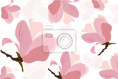 Magnolia rose fleur vecteur d'information