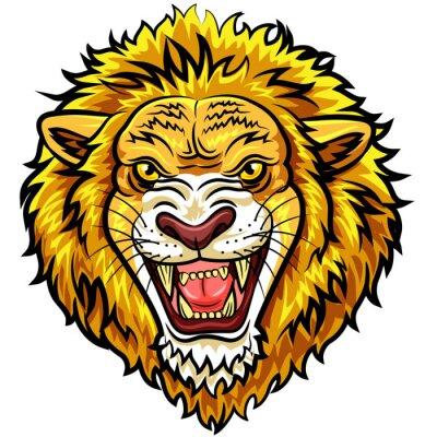 Papiers peints Mascotte, tête, fâché, lion