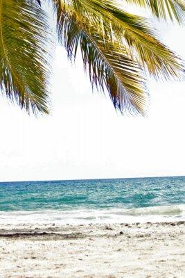 Papiers peints Mer, antilles, caraibes, tropiques ...