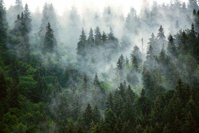 Papiers peints Misty mountain landscape