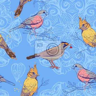 modèle avec des oiseaux et mandala fond