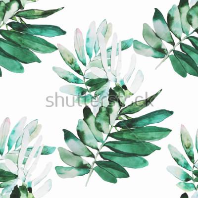 Papiers peints Modèle d'illustration plantes aquarelle