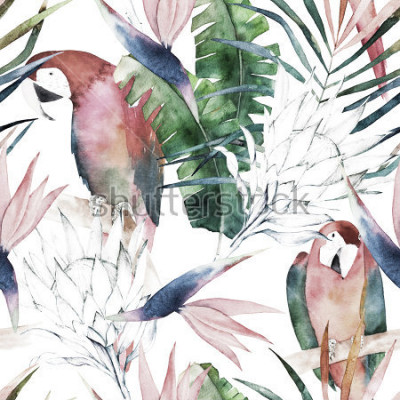 Papiers peints Modèle sans couture tropical avec perroquets, protea et feuilles. Aquarelle d'été. Illustration dessinée à la main exotique