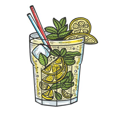 Mojito cocktail sketch engraving vector illustration. T-shirt apparel print design. Scratch board style imitation. Black and white hand drawn image.