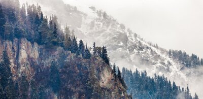 Papiers peints montagne