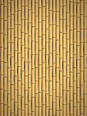 Papiers peints Motif en bambou