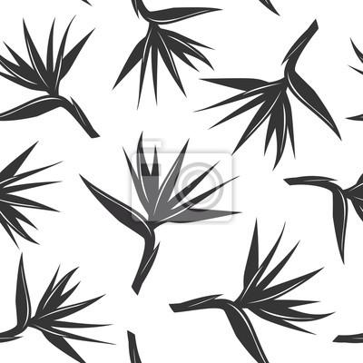 Motif En Noir Et Blanc Sans Couture Avec Oiseau Du Paradis