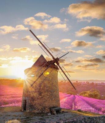 Papiers peints Moulin à vent, Levander, champ, contre, coloré, Coucher soleil, Provence, france