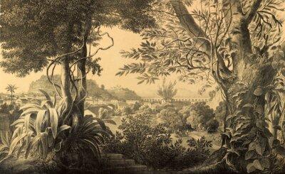 Papiers peints Nature de l'Amérique du Sud.