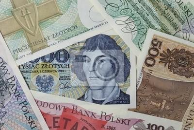 Papiers peints Nicolas Copernic portrait