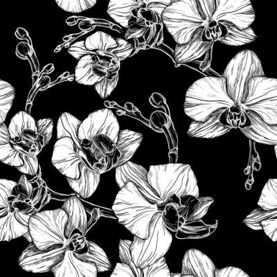 Papiers peints Noir, blanc, seamless, modèle, main, dessin, orchidée, fleur