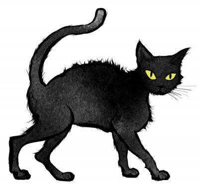 Papiers peints Noir, chat, marche, regarder, appareil-photo