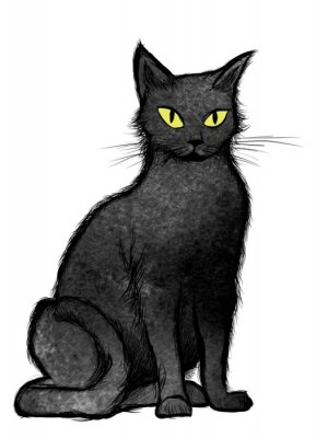 Papiers peints Noir, chat, séance, regarder, appareil-photo
