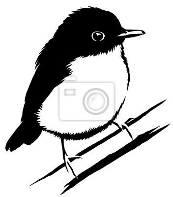 Papiers Peints Noir Et Blanc Linéaire Peinture Dessiner Sparrow Oiseau