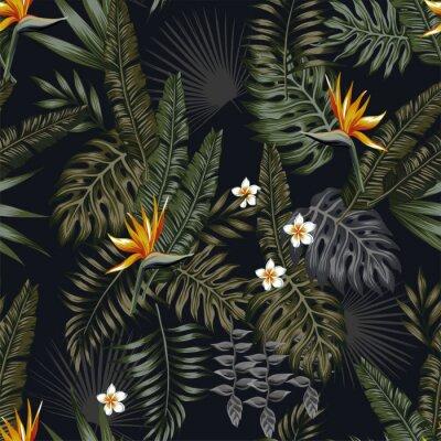 Nuit Tropicale Seamless Pattern Fond Noir Papier Peint Papiers