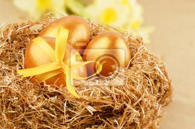 Oeufs d'or dans le nid